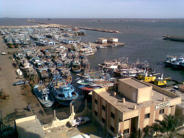 Port Said fishing harbour